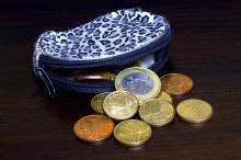 purse-758770_640.jpg